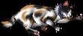 Turtle Tail.kittypet