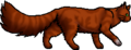 Squirrelflight.loner