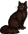 Piketooth.warrior