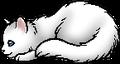 Cloudtail.kit