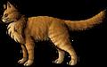 Lionblaze.rogue