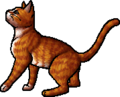 Squirrelflight.deputy.alt
