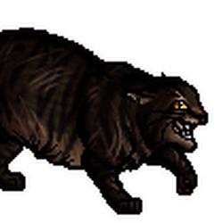 ShadowClan cats