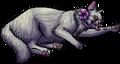 Petunia.kittypet
