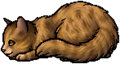 Spotted Fur.kit
