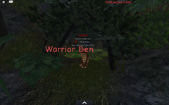 ShadowClan warrior den.screenshot