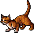 Squirrelflight.apprentice.alt