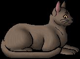 Lilywhisker