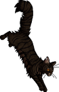 Tigerstar (AVoS).gc