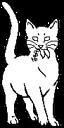 Medicine Cat.short
