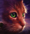 Squirrelflight.NP-3-RR