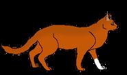 Wiewiórawojo