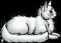 Frostfur.elder