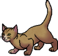 Squirrelflight.apprentice.alt2