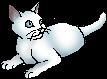 Snowkit (TPB)