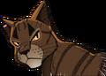 Tigerstar.ASIR