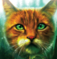 Squirrelflight.TBC-4