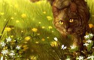 Brambleclaw-cats-warriors-kot-tsvety
