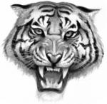 Tiger.FG-1