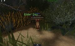 WindClan elder den.screenshot