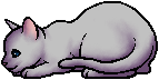 Crowfeather.kit.alt.png
