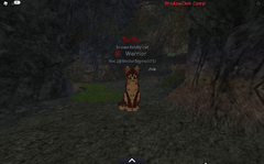 ShadowClan medicine den.screenshot