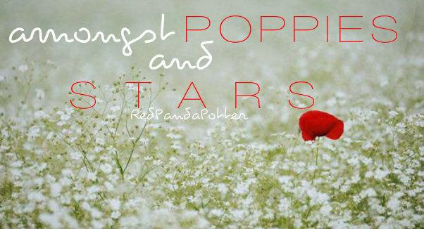 Amongst Poppies and Stars.jpg