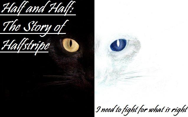 Half and Half: The Story of Halfstripe