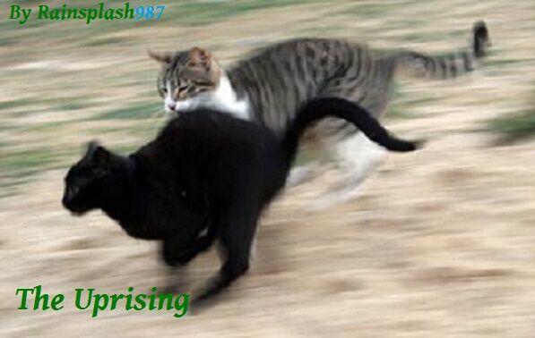 The Uprising.jpg