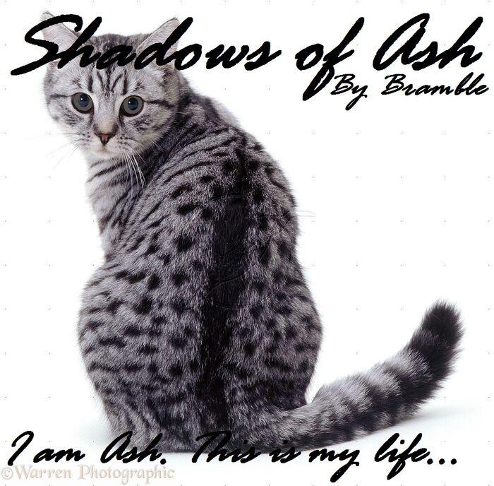 Shadows of Ash.jpg