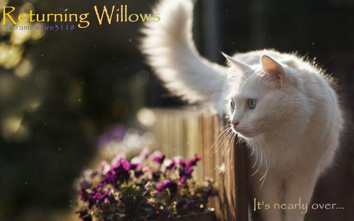 Returning Willows.jpg
