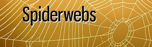 GCwer71390155774.jpg