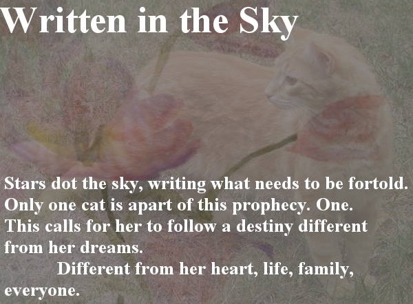 Written in the Sky Series