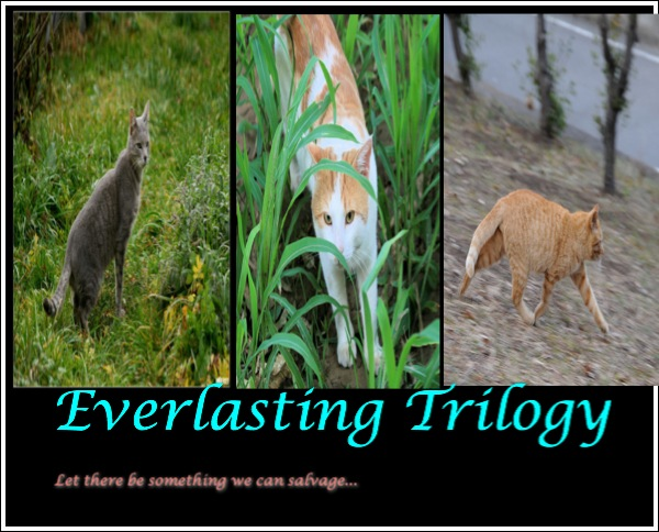 Everlasting Trilogy