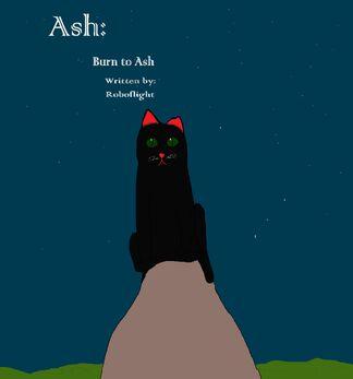 Burn to Ash cover.jpg