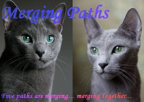 Merging Paths.jpg