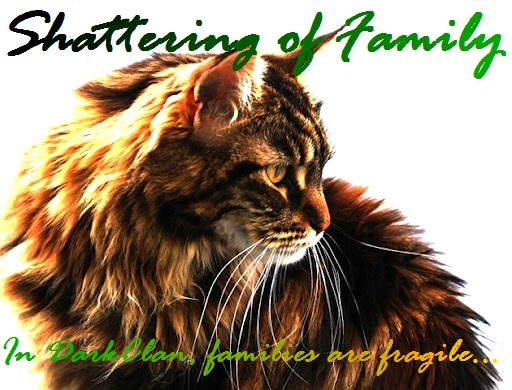 Shattering of Family