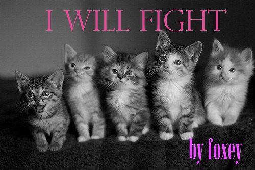 I Will Fight