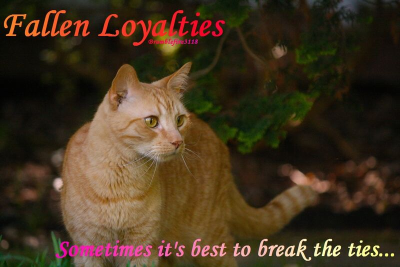 Fallen Loyalties.jpg