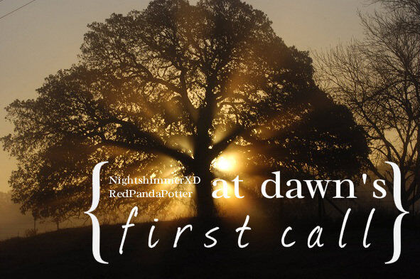 At Dawn's First Call 2.jpg