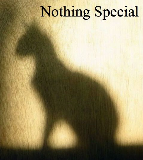 Nothing Special Cover.jpg