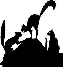 Black cats.jpg