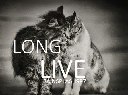 Longlive.jpg