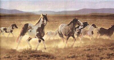 Gallop n.jpg