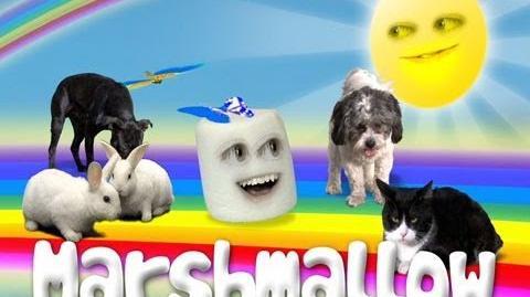 Annoying Orange Marshmallow Theme Song