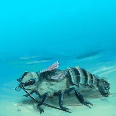 Sea-Bee