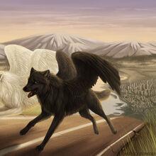 Winged Wolf Warriors Of Myth Wiki Fandom