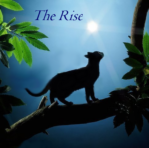 The Rise.png