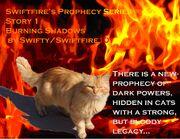 Flame cat cover.jpg