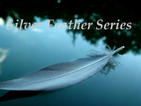 The Silver Feather Series